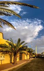20180823-VHYH5753 (Tai Le in KSA) Tags: jeddah makkahprovince saudiarabia sa