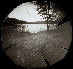 Baltelės ežeras (batuda) Tags: pinhole obscura stenope lochkamera analog analogue lid cap beer beerlid ilford ilfospeed wide wideangle lowangle paper d76 11 4400f landscape summer august lake water plant nature vanagė vienagraižėvanagė hieraciumpilosella aukštaitijosnacionalinisparkas utenosrajonas baltelės ežeras utenykštis utena lithuania lietuva