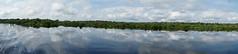 Amazon Panorama (tim ellis) Tags: holiday amazon iracema rionegro jauriver panorama reflection manaus brazil