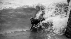 NU8A9210 (felt_tip_felon®) Tags: surf brighton beach surfsup bodyboarding bodyboard ocean plasticfreesea tide waves break shore seaside palacepier albionbeach