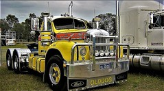photo by secret squirrel (secret squirrel6) Tags: secretsquirrel6truckphotos craigjohnsontruckphoto australiantrucks bigrigs worldtrucks truckphotos mack bmodel vintage classic truckshow echuca display wheels