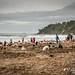 Hot Water Beach, Coromandel