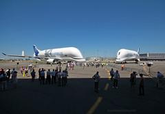 BelugaXL_Airbus_F-WBXL-043_cn1824 (in explore) (Ragnarok31) Tags: airbus a330 beluga xl fwbxl cargo event first flight cérémonie a330743l