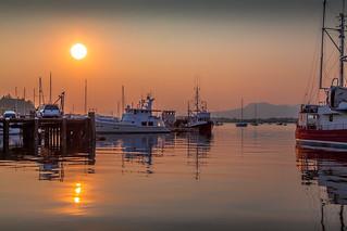 Cowichan Bay Tranquility