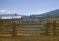 Image2437 (Alvier) Tags: usa amerika westen nordwesten grandcoulee reise