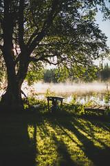 Midsummer18-24 (junestarrr) Tags: summer finland lapland lappi visitlapland visitfinland finnishsummer midsummer yötönyö nightlessnight kemijoki river