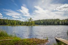 Kintulammi (Markus Heinonen Photography) Tags: kintulammi järvi lake lakeview maisema landscape waterscape luonto nature tampere suomi finland europe kesä summer retkeily hiking retkipaikka