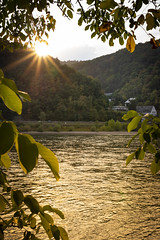 Sunset at the river rhine (Martin Bärtges) Tags: sky berge hills landscapephotography landschaftsfotografie sunset sunshine sun sonnenuntergang sonnenschein sonne abend evening water rhine koblenz rheinlandpfalz rhein river landscape landscapelovers landschaft