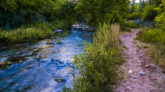 Jones Creek at Jones Hole. Uintah County, Utah (Jeff in Henderson) Tags: jonescreek joneshole uintahcounty uinta utah water creek nature outside hiking flyfishing sport trail