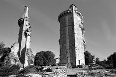 Ruines du château de Mehun-sur-Yèvre (Philippe_28) Tags: mehunsuryèvre berry 18 cher france europe château castle ruines ruins 24x36 argentique analogue camera photography film 135 bw nb