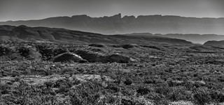 Looking Across the Desert Landscape of Big Bend National Park (Black & White)
