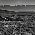 Looking Across the Desert Landscape of Big Bend National Park (Black & White) thumbnail