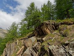 2018-09-16_9161775 © Sylvain Collet_DxO.jpg (sylvain.collet) Tags: mountains alpesdehauteprovence france wild montagne colmarslesalpes lacdallos nature