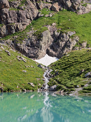 Green Mirror (wicks_photo) Tags: alps glacier grass green lake oberhornsee snow switzerland