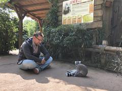 IMG_6817 (gabrielgs) Tags: holiday holiday2018 vakantie2018 camping frankrijk france zoo la fleche lafleche animals dierentuin loire