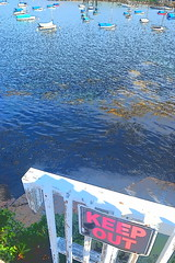 DSC_0067 (mikedolinger) Tags: boston gloucester friends lee aldrich joni birthday trip paddle board