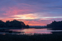 Een spectaculaire zonsopkomst (Pieter ( PPoot )) Tags: zonsopkomst makkumerplas lucht bewolking kleur
