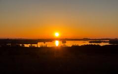 atardecer en invierno Parque Nacional de las Tablas de Daimiel Ciudad Real 04 (Rafael Gomez - http://micamara.es) Tags: geo:lat=3913416013 geo:lon=369365222 daimiel castillalamancha españa esp