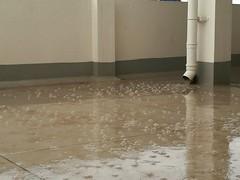bubbling rain (po0ja) Tags: monsoon bubbles rain honor8 davangere karnataka india