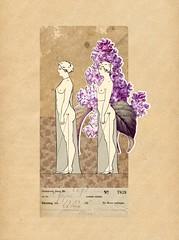 Collage #1821 (a.kuehn.wb) Tags: collage art fineart kunst kunstwerk mixedmedia blaue3 blaue3fineart andreaskühn