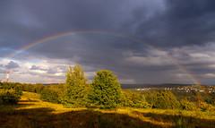 Rainbow (Denis Thonnard) Tags: ifttt 500px horizon over land fog landscape sunrise rural scene sun boulevard copse meadow country road field moody sky rainbow