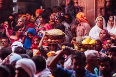 Carrying Offerings in Shri Banke Bihari Mandir (AdamCohn) Tags: abeer adamcohn bankebiharimandir hindu india shribankeybiharimandir vrindavan gulal holi pilgrim pilgrimage अबीर गुलाल होली