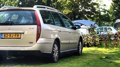 Citroën C5 2.0i 16V Break (Skylark92) Tags: nederland netherlands holland gelderland kesteren lede oudewaard grass window bxclub kampeerweekend citroën c5 20i 16v break 82rjfr 2005 onk