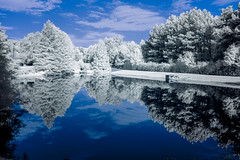 Reflection in Still Water IR (Neal3K) Tags: kolarivisionmodifiedcamera blueirndvifilter blue reflection fayettecountyga georgia ir infrared