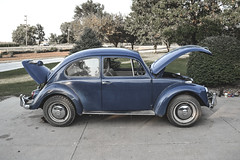 08282011-11 (ReesKlintworth) Tags: 1967 beetle bug carvehicle volkswagen volkswagenbeetle