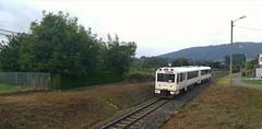 Gracias al desbroce (javivillanuevarico) Tags: galicia feve ferrocarril trenes 242171
