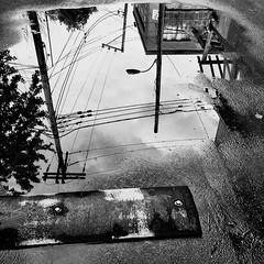La pluie reflète ce petit monde autour de nous... (woltarise) Tags: reflets pluie flaque eau buildings poteau électrique outremont ruelle quartier montréal