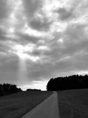 Beamed (Sibeal's world) Tags: degersheim tegersche clouds sky cloudsstormssunsetssunrises forest field monochrome bw blackwhite road rays crepuscular