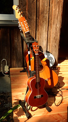 The Musical Family (offroadsound) Tags: music pickinstruments guitars ukulele littlestage brown marron summer verano sommer stage contemplation anticipation expectation