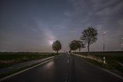 Don't fear the reaper (BasHandels) Tags: night longexposure dusk dawn longexpo slowshutter street road moonlight tree outdoor nature