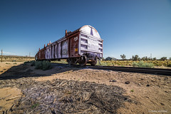 Desert Cargo (cedant1) Tags: california park train union pacific railroad boxcar kelso mojave