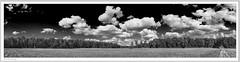20180907-Emkum-Panorama-02-Rahmen-sw-kl (fredericfromage) Tags: sw bw monochrom himmel wolken felder bäume wald landschaft münsterland pentaxart pentaxflickraward