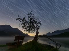 Lake Sils start trails (lukas schlagenhauf) Tags: autumn switzerland schweiz suisse swiss landscape lakesils engadin oberengadin creativcommons lukasschlagenhauf alps mountains pizdalamargna sils silsersee baselgia segl startrails night nightscape