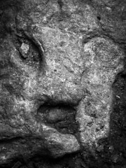 Real face of a rock (Kaarel Kaldre) Tags: macromondays rock stone kivi nägu face mineral eye makro macro closeup mustvalge monochrome blackandwhite noiretblanc outdoor
