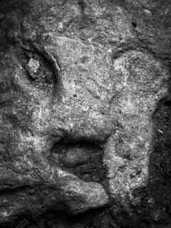 Real face of a rock