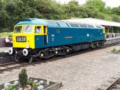 1705   47117   Leicester North 09/09/18 (LCB-65) Tags: class47 1705 47117 br blue sparrowhawk leicester north gcr great central railway 2018 diesel gala