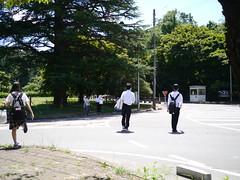 Sun, sun, sun (しまむー) Tags: panasonic lumix dmcgx1 gx1 g 20mm f17 asph 東北大学 オープンキャンパス tohoku university tour
