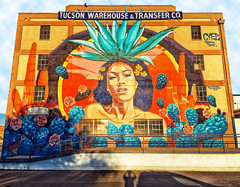 Agave Goddess (Chuck Pacific AKA Chuck Tofu) Tags: hss mayahuel danielcyfimartinez mural streetart agavegoddess tucson arizona myshadow weirdtucson