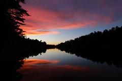 reflective sunset (scienceduck) Tags: scienceduck 2018 september muldrew muldrewlake lakemuldrew cottage cottagecountry muskoka sunset reflection lake water tree
