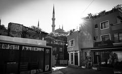 Günaydin Istanbul (gorelin) Tags: turkey istanbul blackandwhite blackwhite black white bw sony alpha a7ii a7 blue mosque sultan ahmet camii streetshooting street streets 28mm fe28f20 turkiye