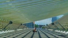 Liège, Belgium: Liège-Guillemins railway station (nabobswims) Tags: belgianrailways belgium hdr highdynamicrange lightroom liège liègeguillemins nabob nabobswims photomatix sel18105g sncb santiagocalatrava sonya6000 station wallonie be