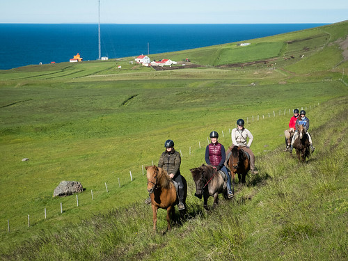 "Afternoon riding tour at Sauðanes-farm • <a style=""font-size:0.8em;"" href=""http://www.flickr.com/photos/22350928@N02/44641727382/"" target=""_blank"">View on Flickr</a>"