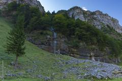 Seealpsee (Giuseppe Caponio) Tags: bach berge felsen landschaft langzeitbelichtung natur steine wald wasser wasserfall wiese weissbad kantonappenzellinnerrhoden schweiz ch