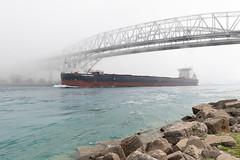 Algoma Equinox Upbound Blue Water Bridge (Lawrence of Berkley) Tags: porthuron michigan unitedstates us
