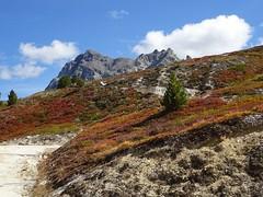 Automne (corinne emery) Tags: stluc hotelweisshorn automne rouge paysage landscape nature valais wallis exterieur suisse