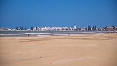 Essaouira (pan_orama) Tags: marokko maroc morocco essaouira beach harbour seagulls fish sun color travel